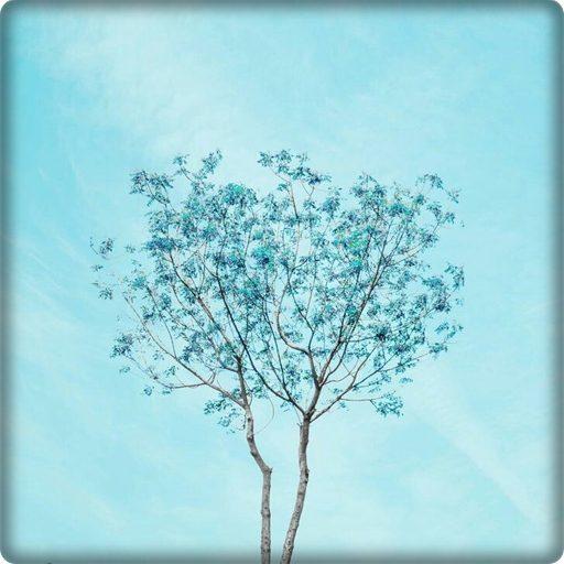 Blue Aesthetic Wallpaper HD Mod APK 5.0
